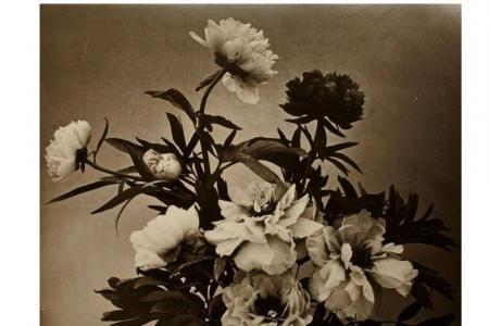 """""""Clase Cámaras lúdicas: crónicas de la invención de la fotografía"""""""