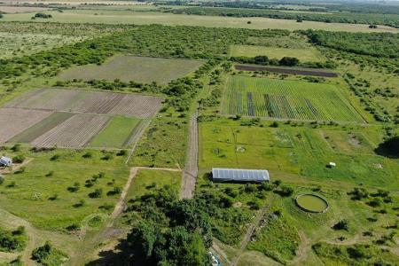 La Reserva Las Piedras se está convirtiendo en un modelo de producción agroecológica, sustentable y con un alto rendimiento. (Fotografía Sebastián Ingrassia).