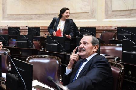 El Senado prorrogó la licencia de Alperovich por otros 90 días