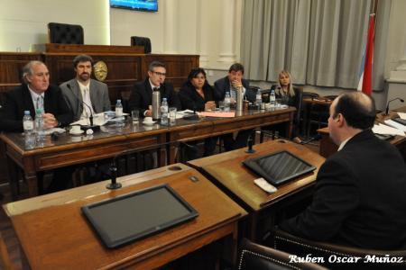 audiencia pública Senado