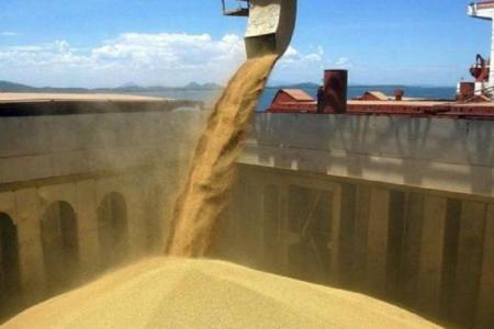 Cerealeras