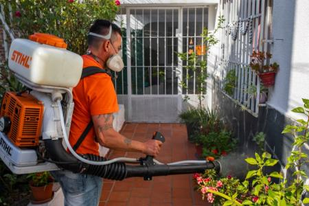 Detectaron un nuevo caso de dengue importado en Paraná