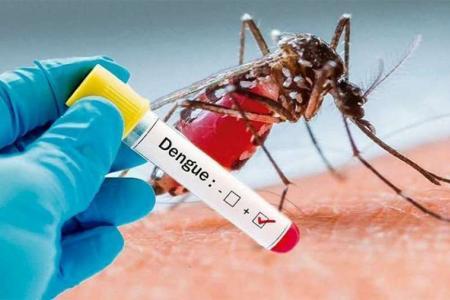 Los diagnosticados con dengue en todo el país suman 36 personas, según el Ministerio de Salud de la Nación.