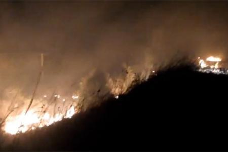 incendio campo Viale