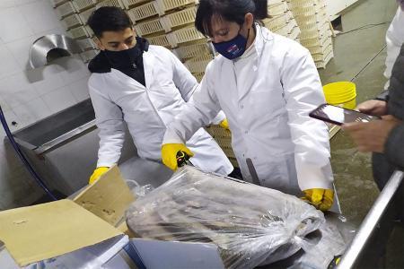 Entre los operativos se incluyeron fiscalización a establecimientos frigoríficos y lugares de acopio y procesamiento de pescado en Victoria.