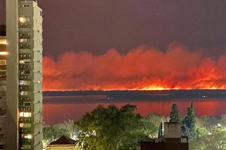 """""""Los incendios intencionales constituyen un importante agente de perturbación de los ecosistemas que afecta millones de hectáreas cada año"""", se indicó en el informe del Conicet de Santa Fe."""