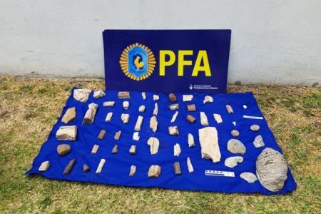 Incautaron restos fósiles y documentos en el allanamiento a una casa de antigüedades