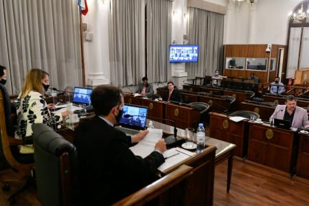 Senado sesión virtual