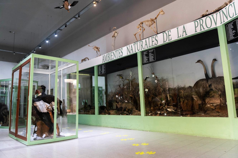 Museo Provincial Antonio Serrano