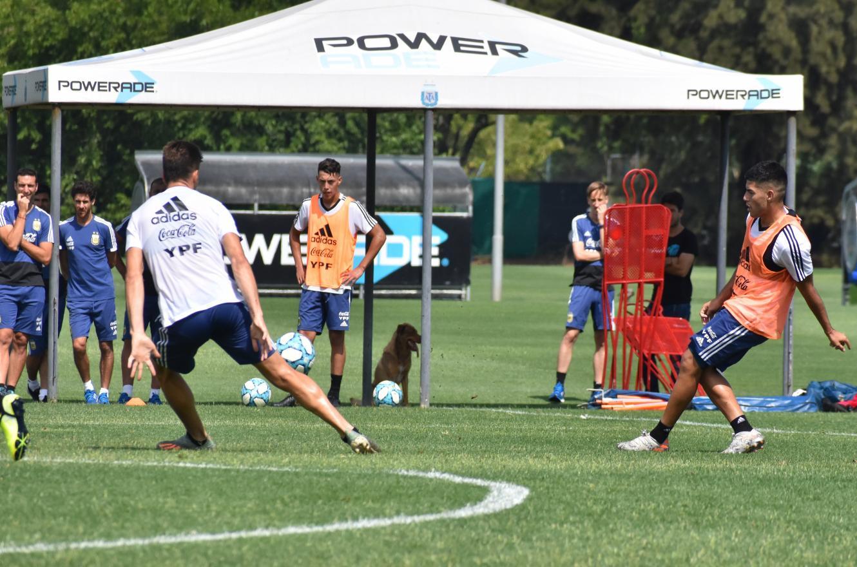 Fútbol: la selección argentina sub 23 se medirá con Paraguay antes del Preolímpico