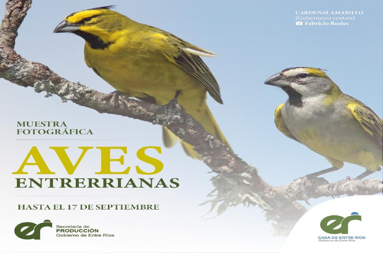 Aves Entrerrianas