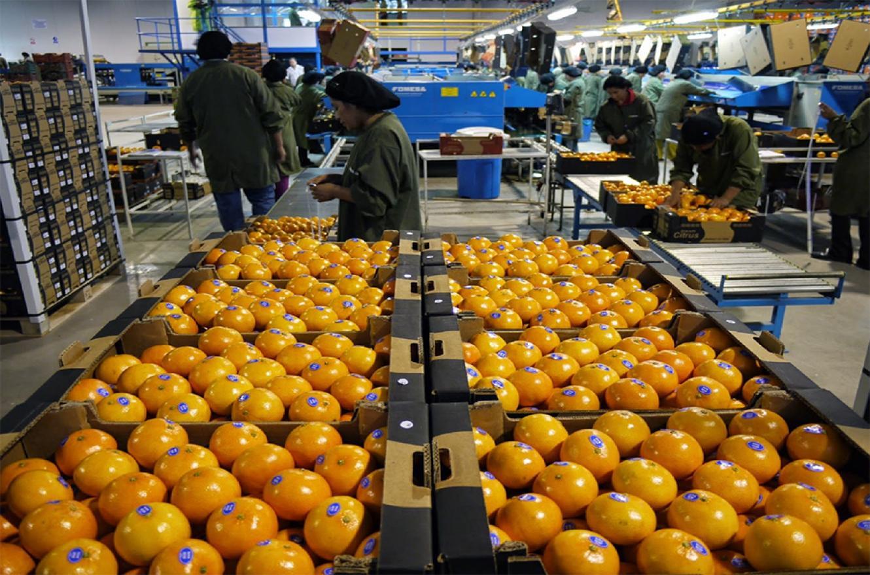 Las autoridades provinciales se reunieron con los representantes de la Cámara de Exportadores de Citrus para analizar la realidad del sector y sus perspectivas.