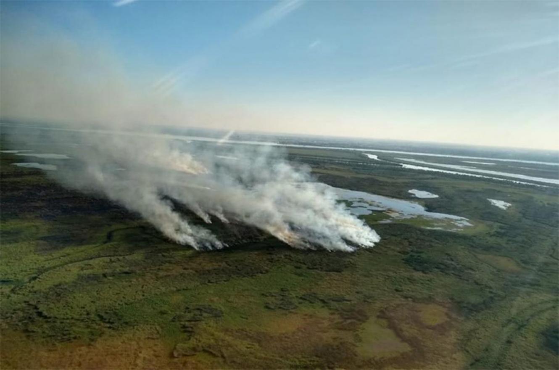 Los incendios en las islas del Delta del Paraná todavía están impunes y la Justicia Federal adeuda respuestas sobre esos hechos.