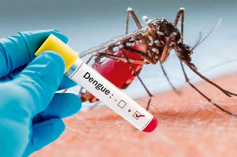 En Gualeguaychú se confirmaron cien casos contagiados de Dengue y aunque se avecina el frío como un aliado, hay preocupación en los profesionales de la Salud.