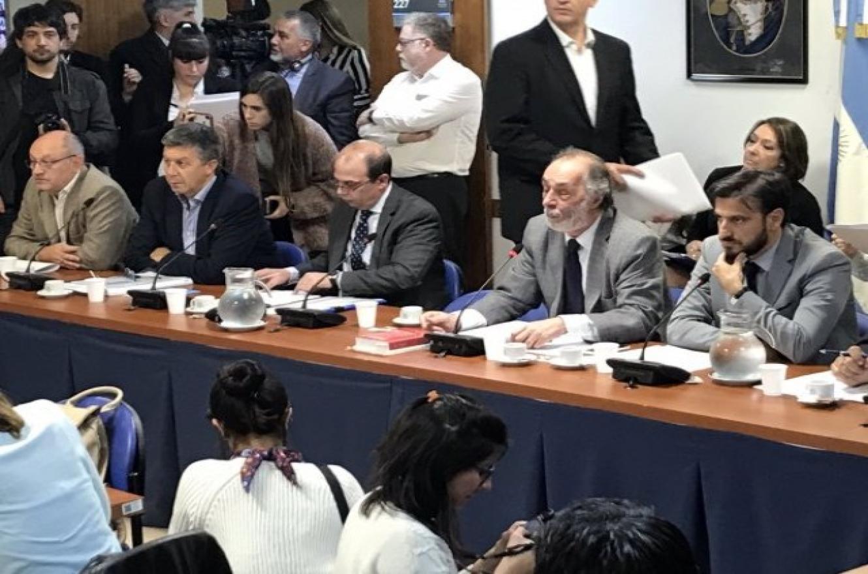 Reunión de comisiones en Diputados