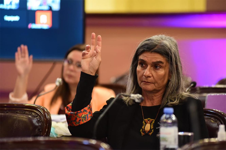 La legisladora Gracia Jaroslavsky propuso introducir modificaciones al Artículo 6º de la Ley 10.402 de Educación Ambiental.