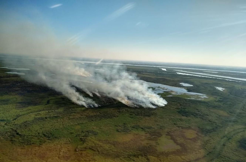 """Diputados santafesinos pidieron a Nación """"medidas urgentes"""" por las quemas en el Delta"""