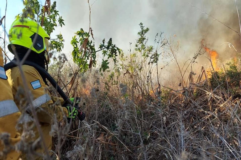 """El intendente Bahl pidió a los vecinos """"no quemar pastizales ni basura"""""""