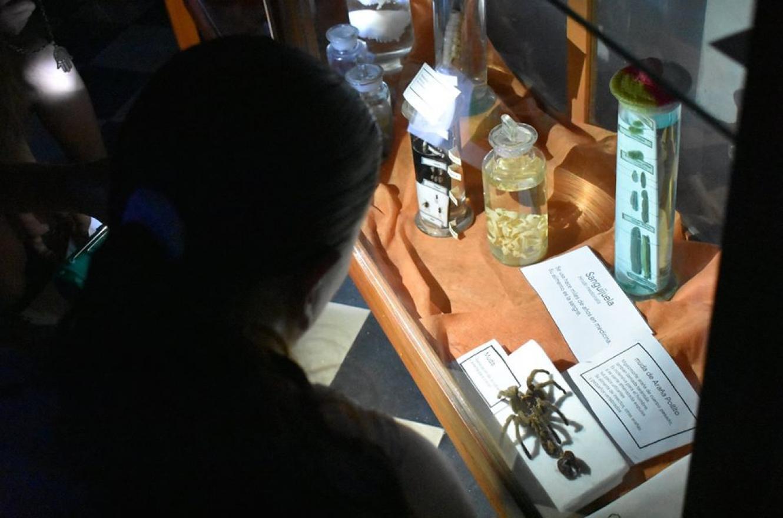 Museo Antonio Serrano