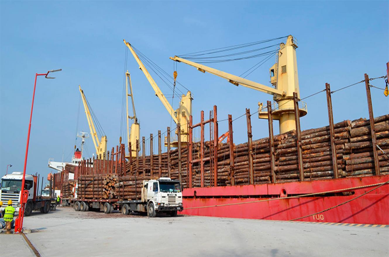 carga de madera Puerto de Ibicuy