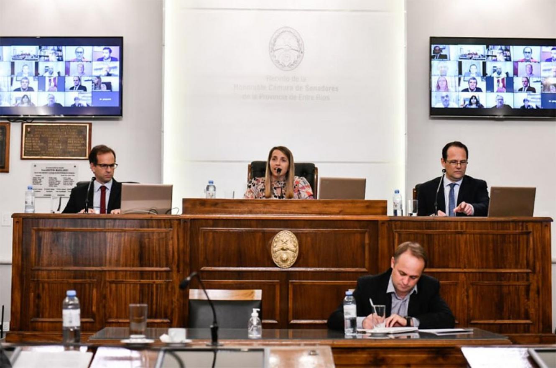 La Cámara de Senadores de la provincia realizó 21 sesiones durante el año, trató 402 proyectos y sancionó 88 leyes.