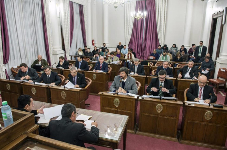 Senadores provinciales