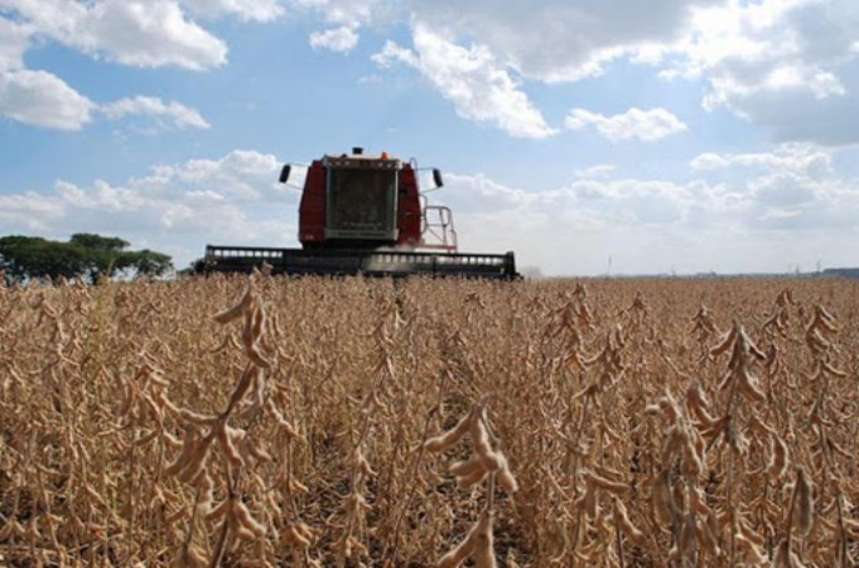 La soja subió casi 2% en Chicago y quedó a un paso de los u$s530