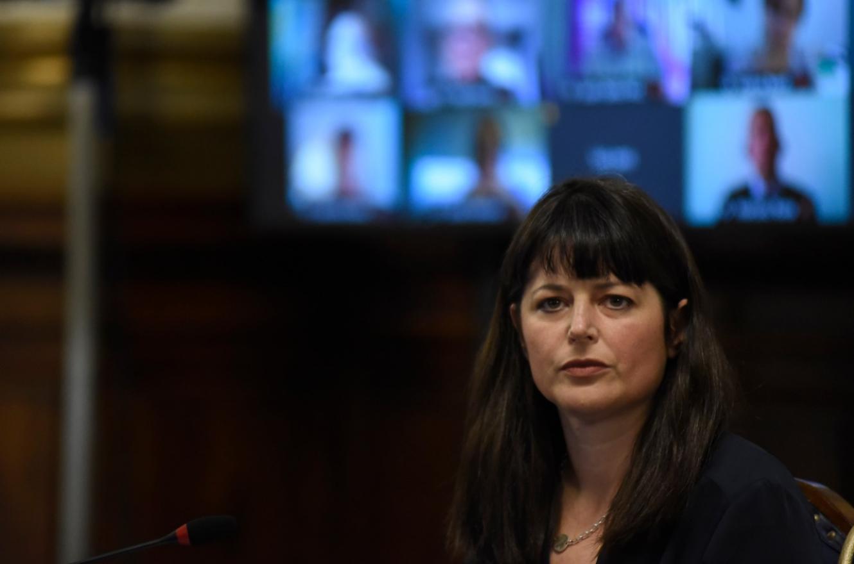 Gaillard plantea cambios en el Código Penal para detener a quienes violen la perimetral | Análisis