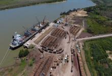 Durante 2020, casi 500 mil toneladas de madera partieron rumbo a China desde Ibicuy