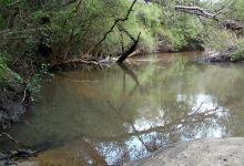 En Entre Ríos hay cerca de 70 áreas naturales protegidas que se extienden en alrededor de 800 mil hectáreas, y que cuentan con el apoyo del gobierno provincial por considerarlas valiosas para la educación, el turismo y la producción.