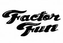 Factor Fun