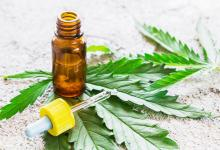 El STJ ordenó al Iosper que disponga de forma inmediata la cobertura médica de aceite de cannabis para un paciente que sufre epilepsia refractaria.