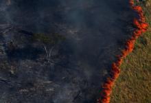 Lo que está sucediendo en el Amazonas con los incendios, tiene su origen en los agrotóxicos, el desmonte nativo, la expansión de la agricultura sin controles y el extractivismo en todas sus formas, entre otros males.