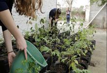 Urdinarrain desarrolla actividades en la semana del Ambiente