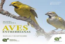Aves Entrerrianas