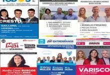 boletas PASO 2021