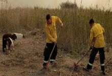 Con operativos en Santa Fe y Buenos Aires continúa el combate de incendios en el Delta