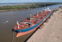 """El buque """"Matakana Island"""", un carguero de 175 metros de eslora con bandera de Hong Kong, cargó unas 20 mil toneladas de troncos de madera de pino entrerriano con destino a China."""