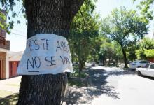 La Justicia llamó a una audiencia de conciliación por la tala en calle Racedo
