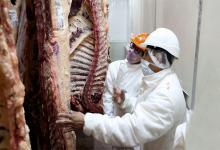 """Para el ministro de Agricultura, Ganadería y Pesca, Julián Domínguez, """"no solamente hay que exportar más"""" sino que """"hay que generar mayor volumen de carne"""" para hacerlo."""