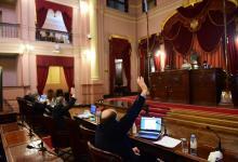 sesión virtual Diputados