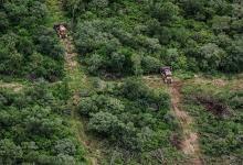 El financiamiento del Fondo Verde del Clima es porque el país logró -a partir de la implementación de ley de bosques- reducir el efecto invernadero y en algunos casos detener el desmonte nativo.