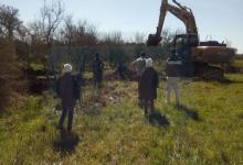 excavaciones familia Gill