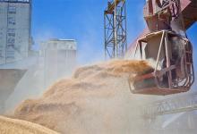 exportaciones soja