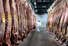 Mientras se desplomó el consumo interno, crecieron las exportaciones de carne