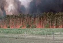 Las columnas de humo se podían divisar desde varios kilómetros de distancia.