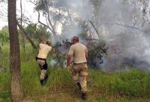 Santa Fe y Entre Ríos suman esfuerzos para controlar los incendios en la zona de islas.