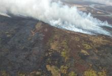 El texto prohíbe por 60 años los cambios en la utilización del suelo en los bosques nativos, áreas protegidas y humedales incendiados para intentar recuperarlos.