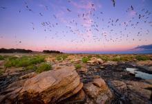 Debatirán en el Senado la creación de un Parque y Reserva Nacional en Río Negro