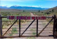 terreno Benetton mapuche